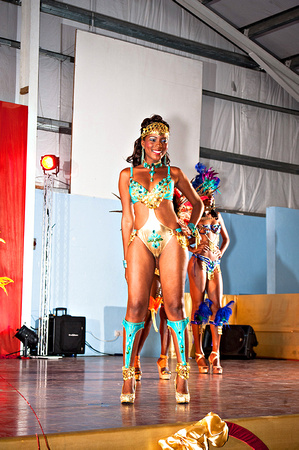 Bill Mortley_Valley Carnival Queen Show _June 20th_2015-4755