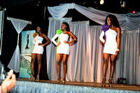 Bill Mortley_National Carnival Queen Competition_ 7.02.2016 -119